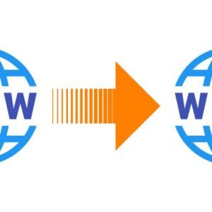 Domain Transfer Fee